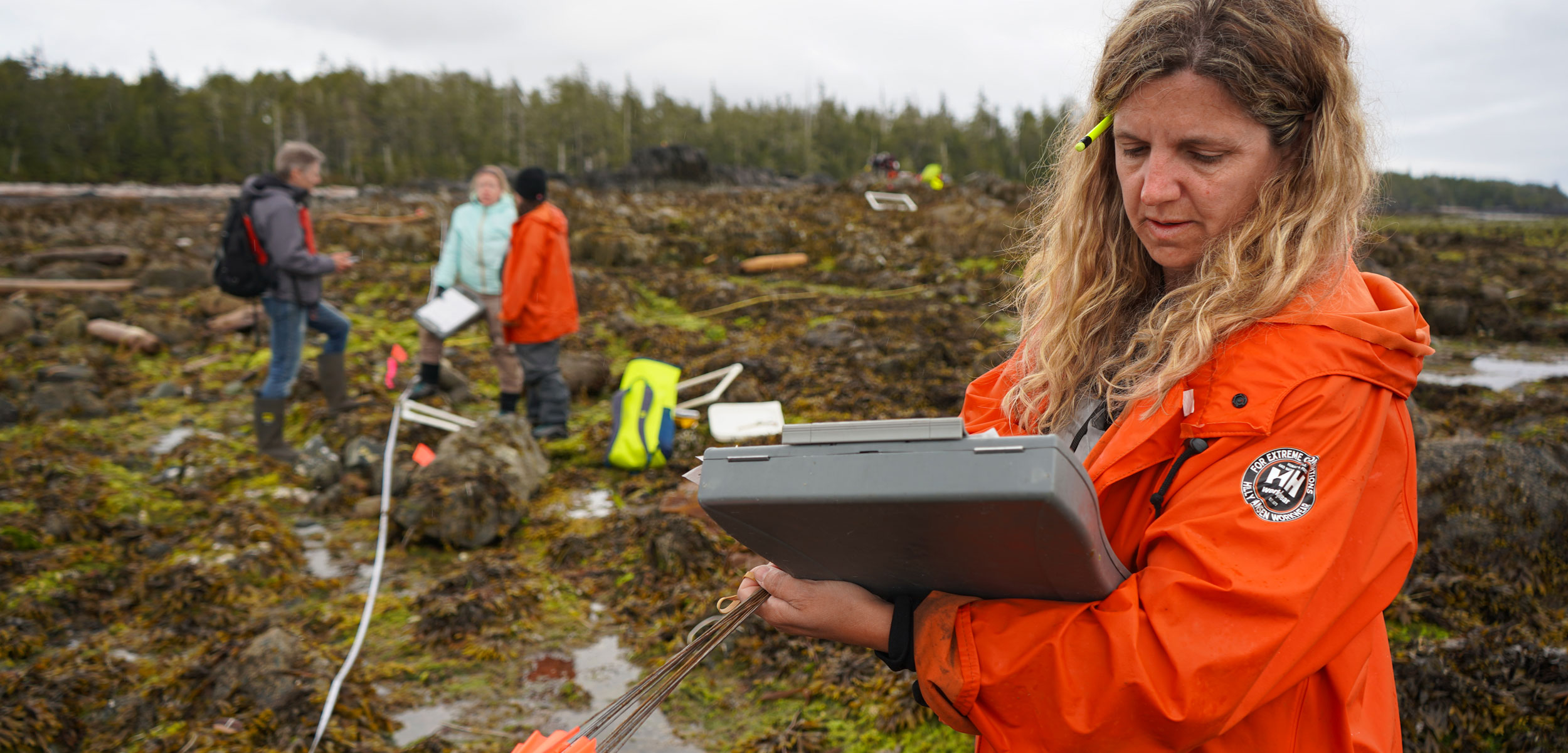 Michelle Bigg, integrated responses planning program head for Fisheries and Oceans Canada, records data at an intertidal site on Goose Island, British Columbia