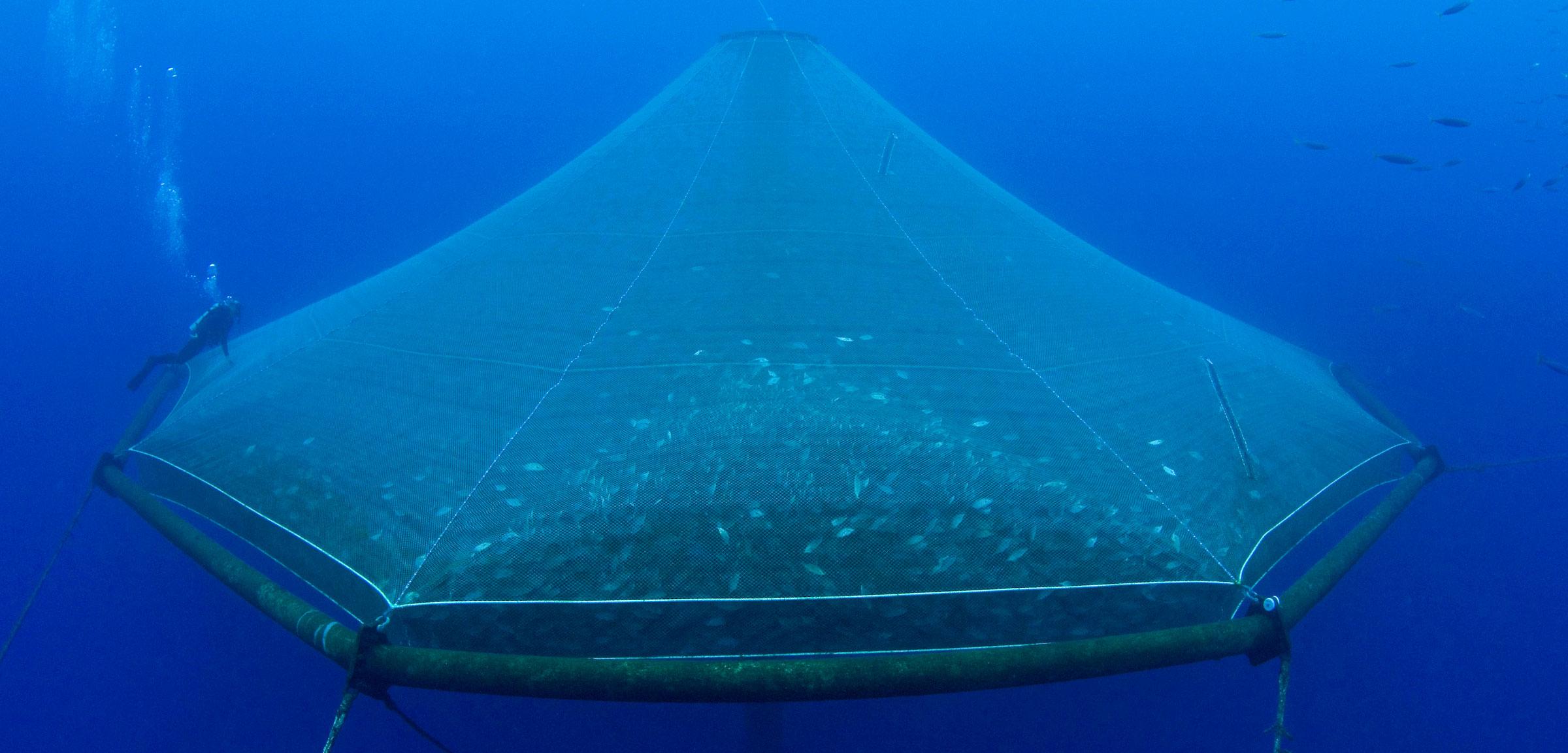 underwater net cage