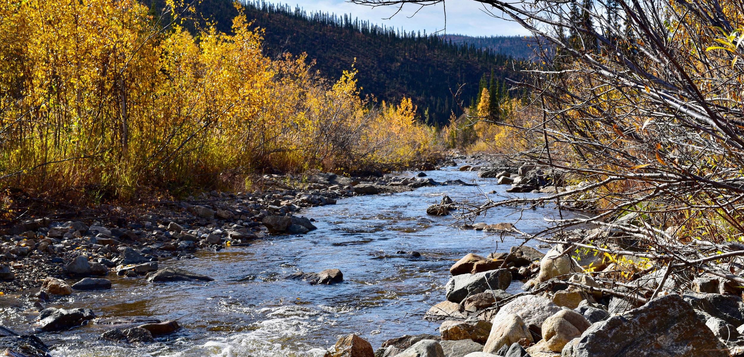 Jack Wade Creek, Alaska