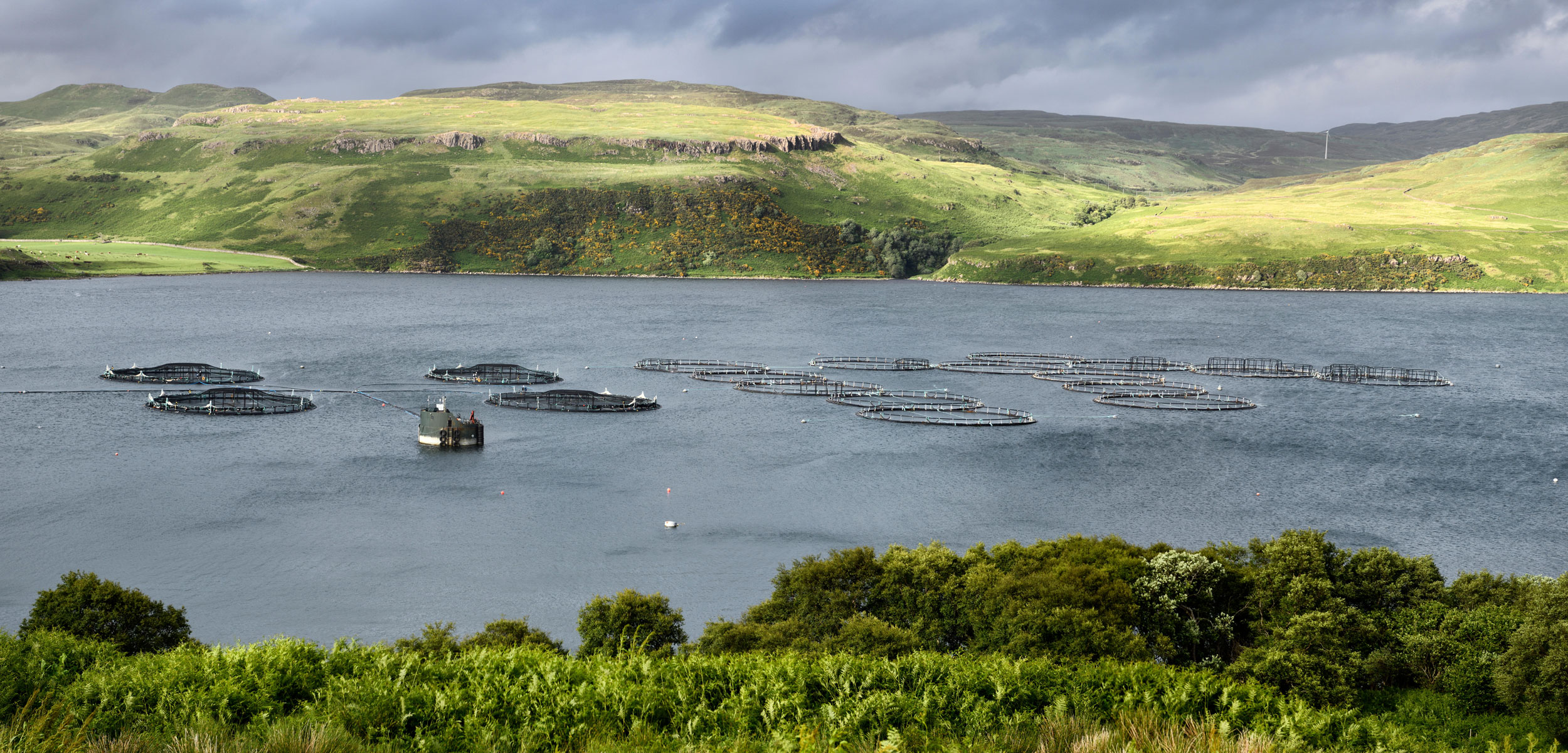 Salmon fish farm net pens on the Isle of Skye, Scotland