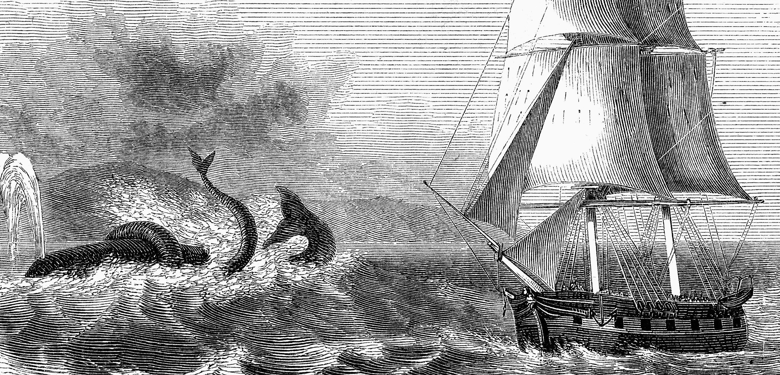 header-sea-monsters.jpg
