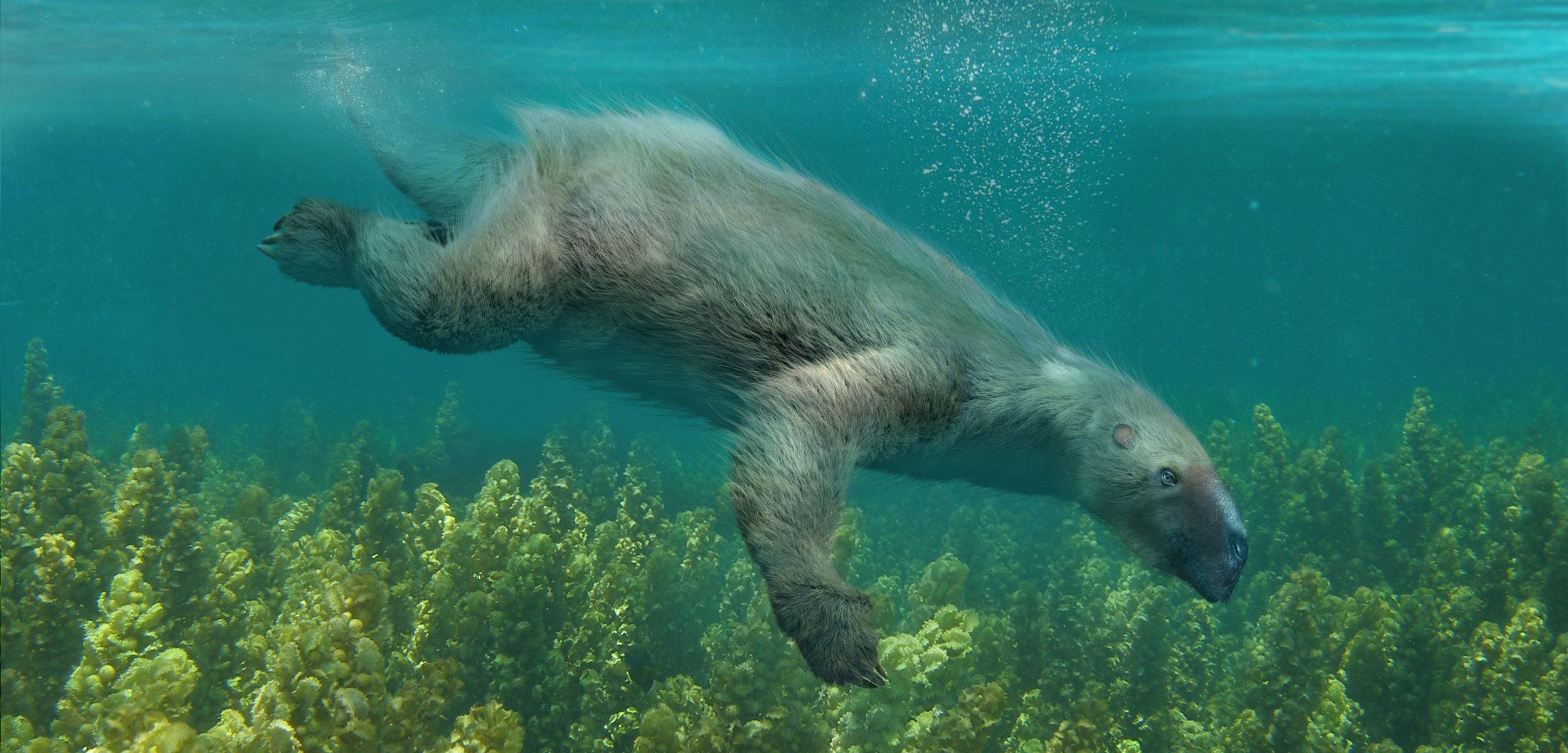 rendering of a Thalassocnus sloth