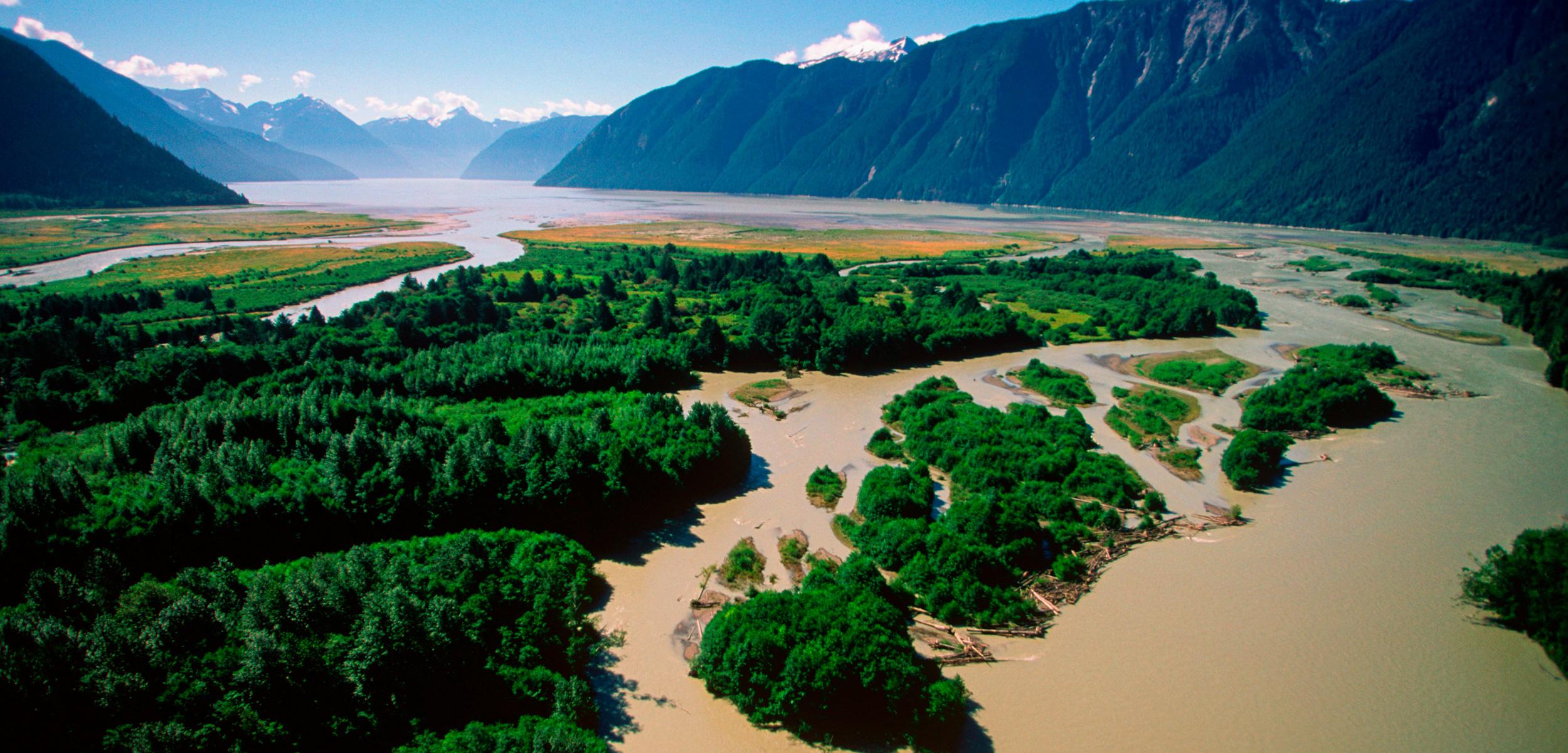Knight Inlet estuary, British Columbia