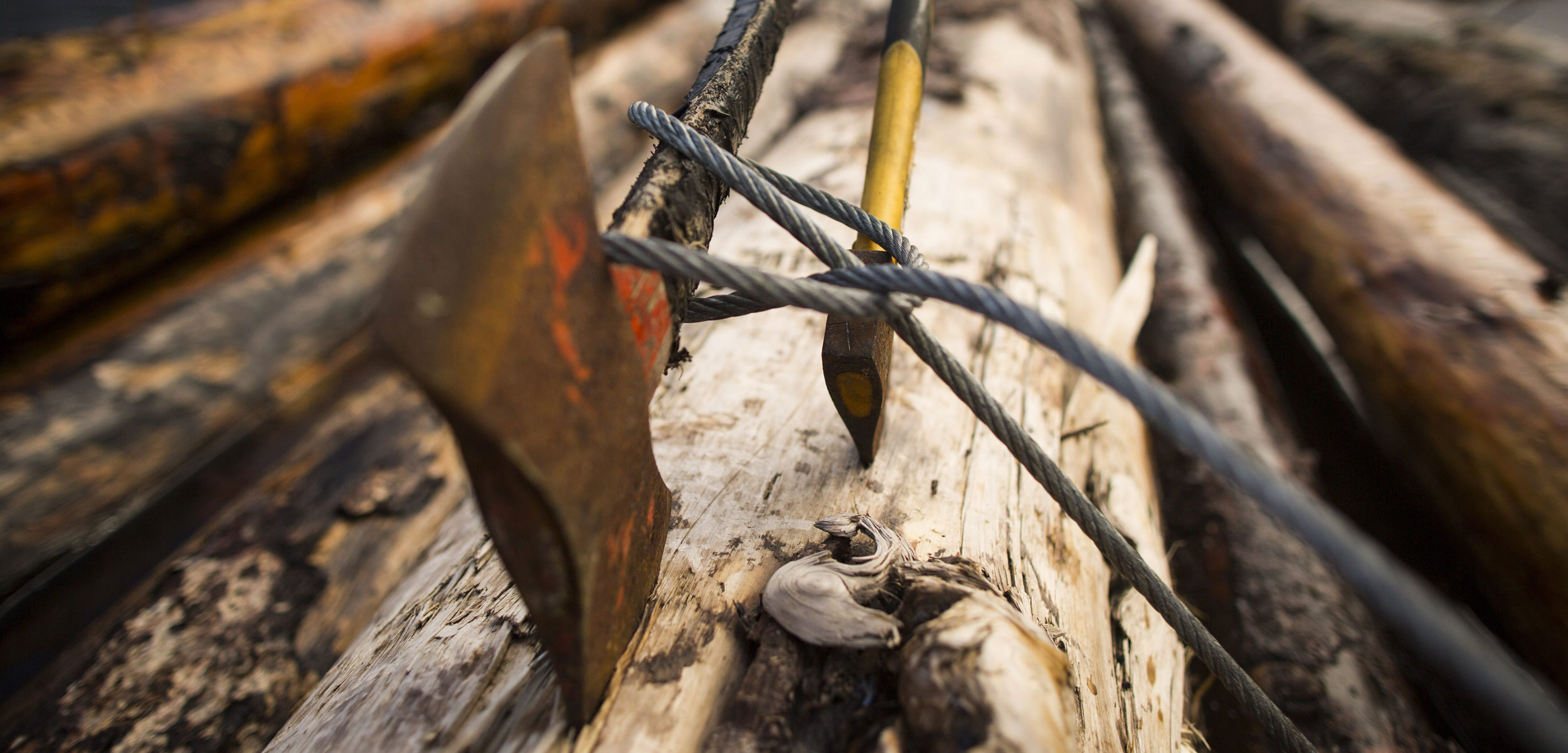 axes in salvaged logs in Gibsons, BC