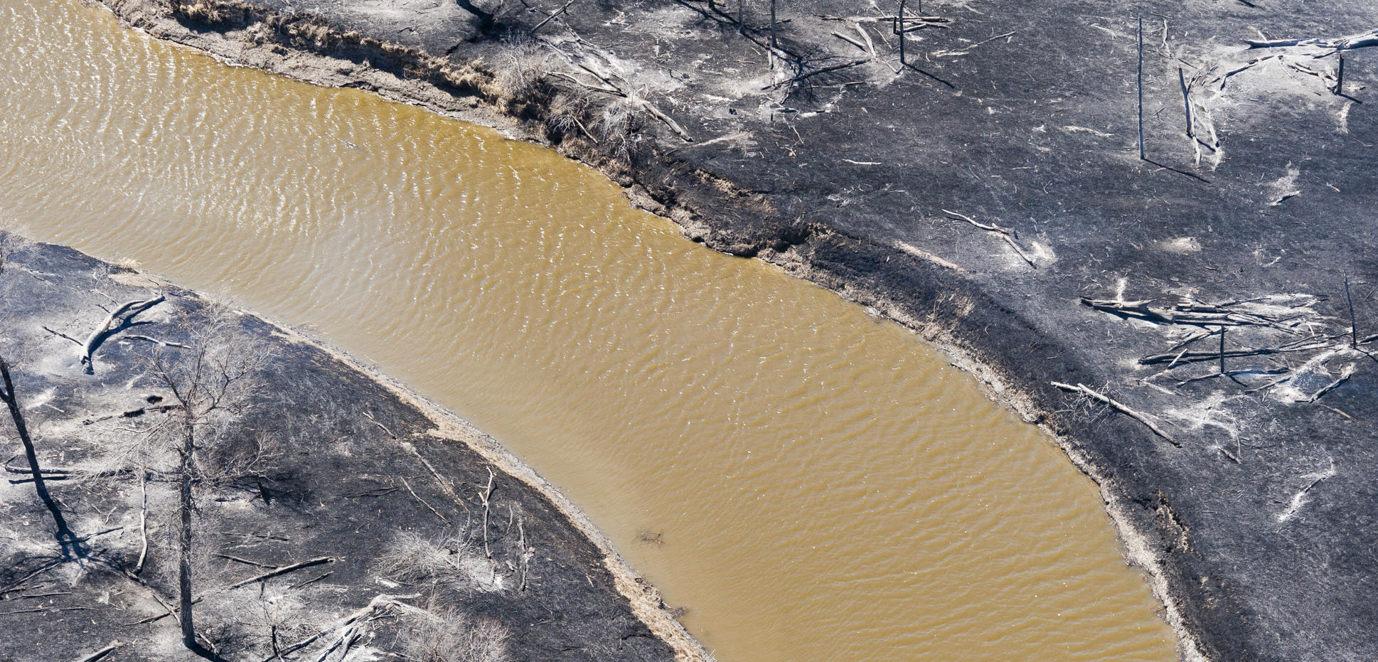 muddy river surrounded by charred aftermath of a wildfire