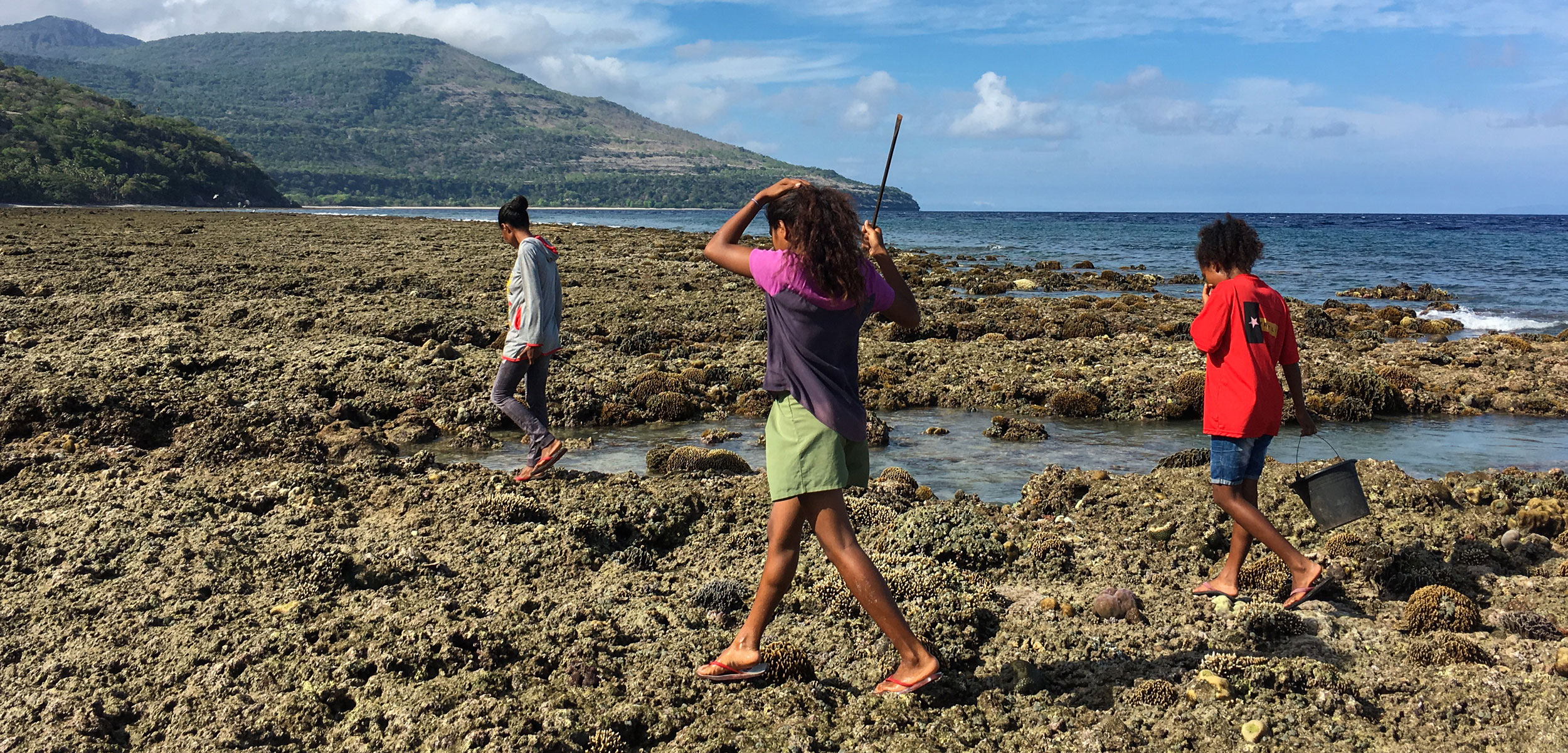 Women forage for marine animals on the rocky shore near Adara, a village on Atauro Island, Timor-Leste