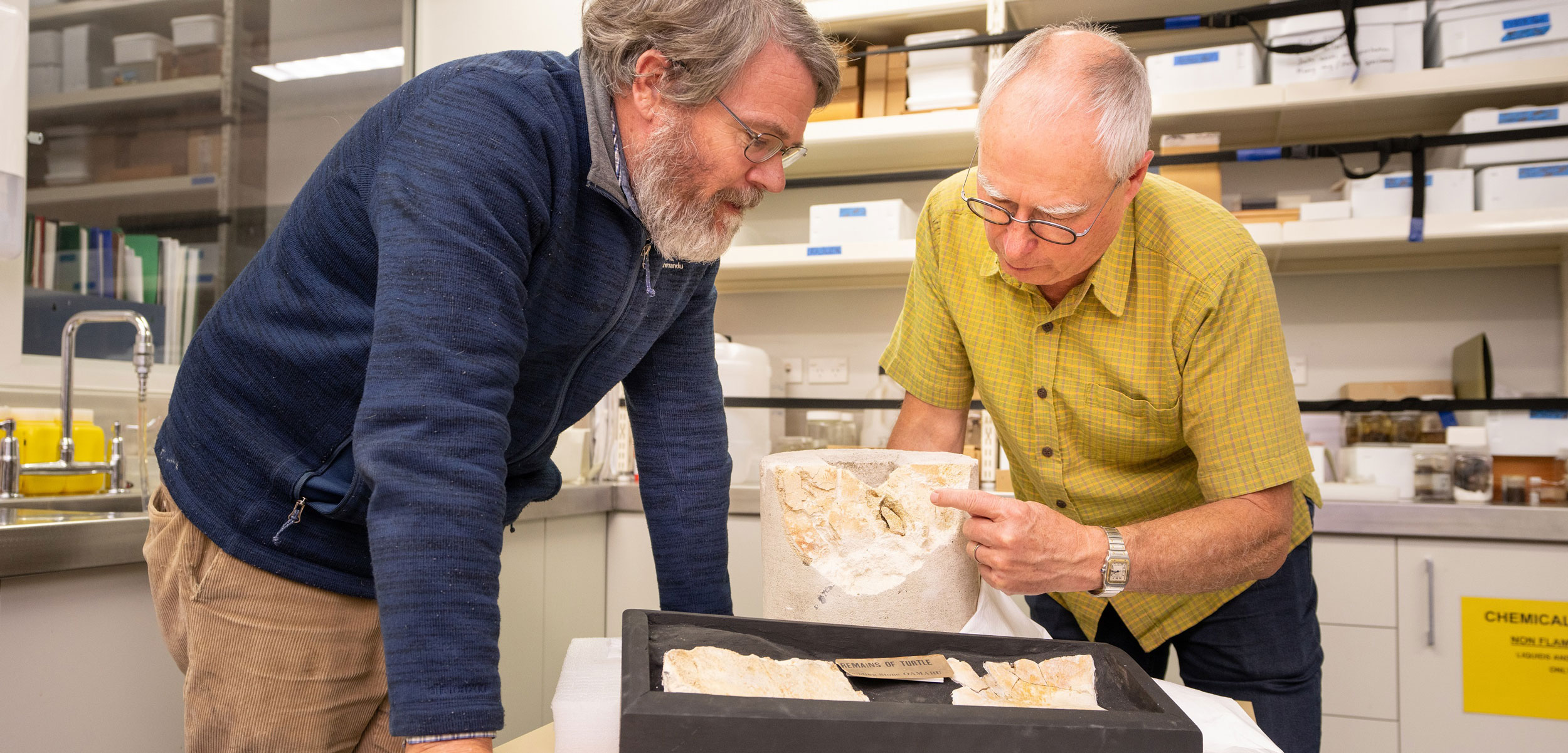 Paul Scofield (left) and Paul Dean (right) examine a fossilized turtle bone found in limestone that was once inside a pillar in the Oxford Terrace Baptist Church in Christchurch, New Zealand