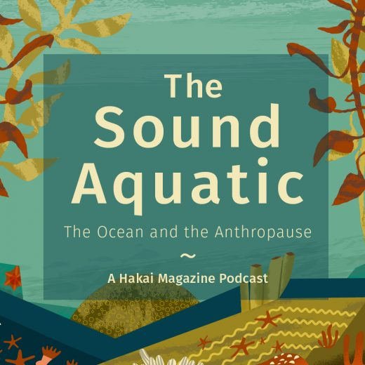 The Sound Aquatic: The Ocean and the Anthropause. A Hakai Magazine Podcast