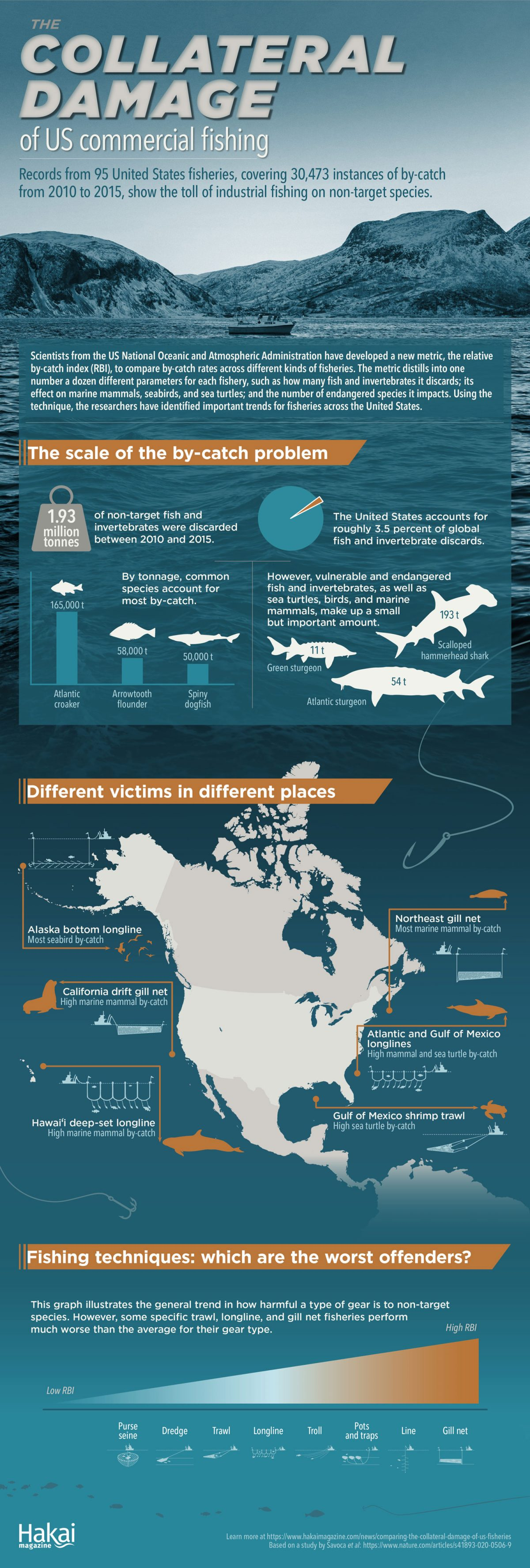bycatch in US fisheries infographic
