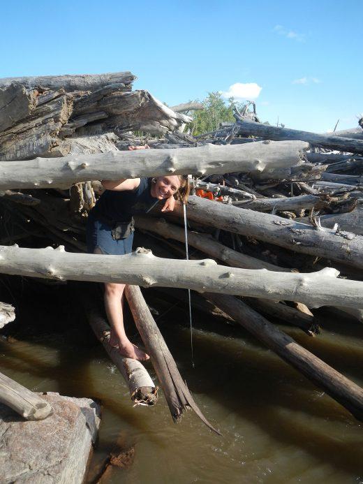 Dr. Natalie Kramer stands on a driftwood logjam