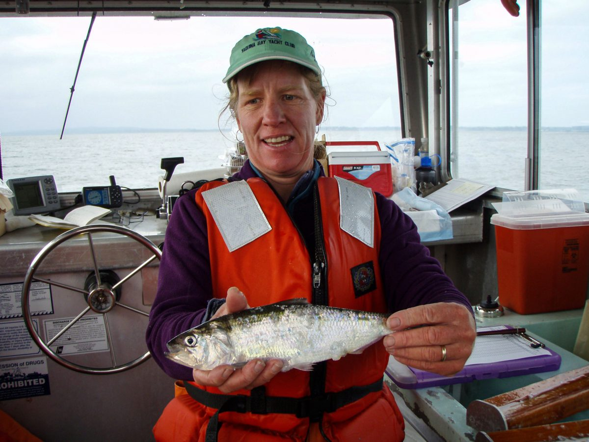 Fisheries biologist Laurie Weitkamp