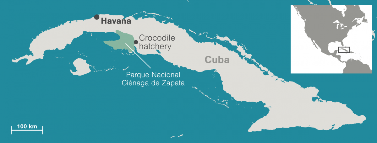map of Cuba showing the Zapata Swamp and crocodile hacthery