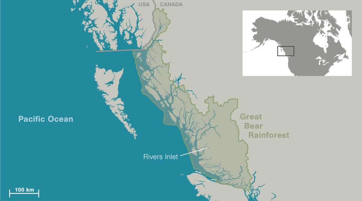 map showing the location of the Great Bear Rainforest