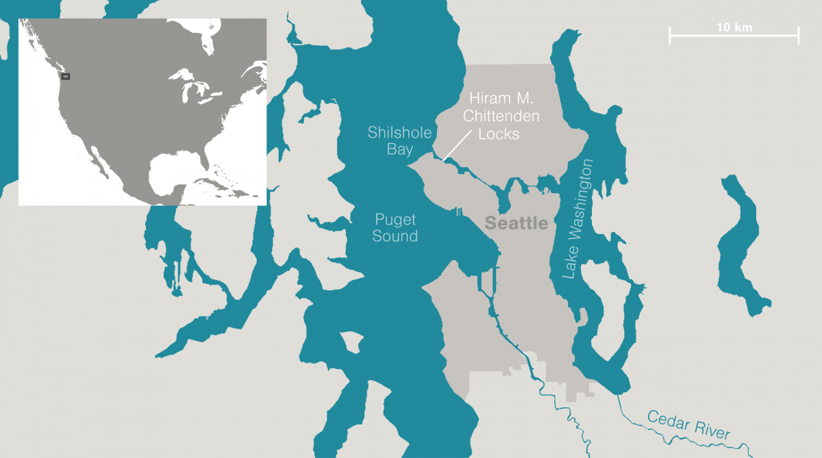 map of Seattle area showing Hiram M. Chittenden Locks
