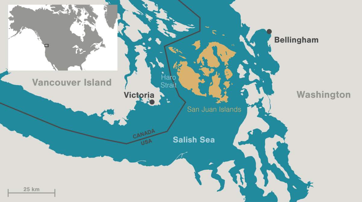 map showing the San Juan Islands and the Salish Sea