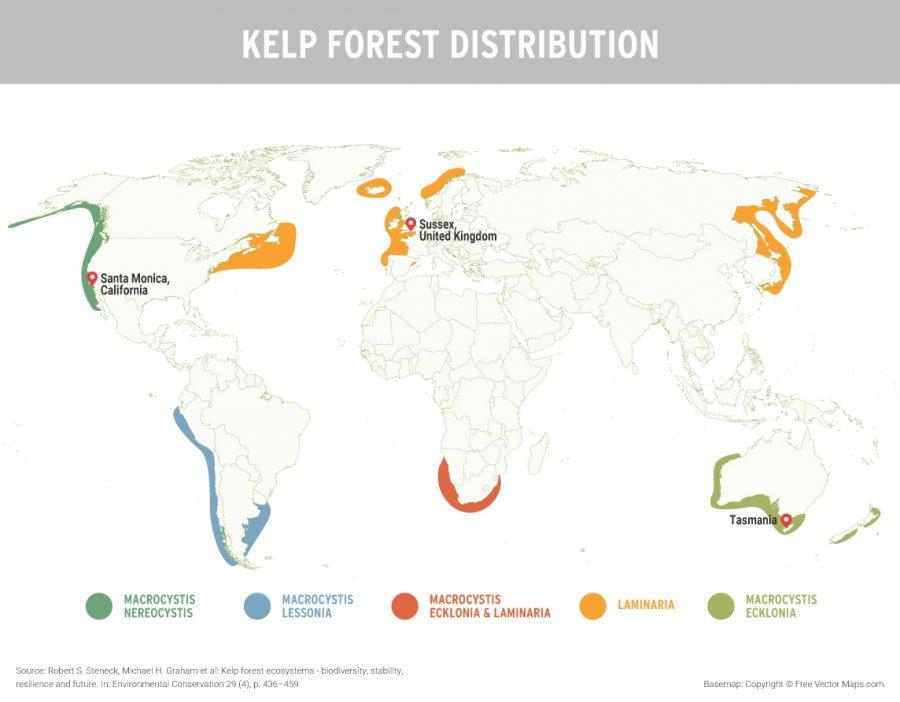 map of global kelp distribution