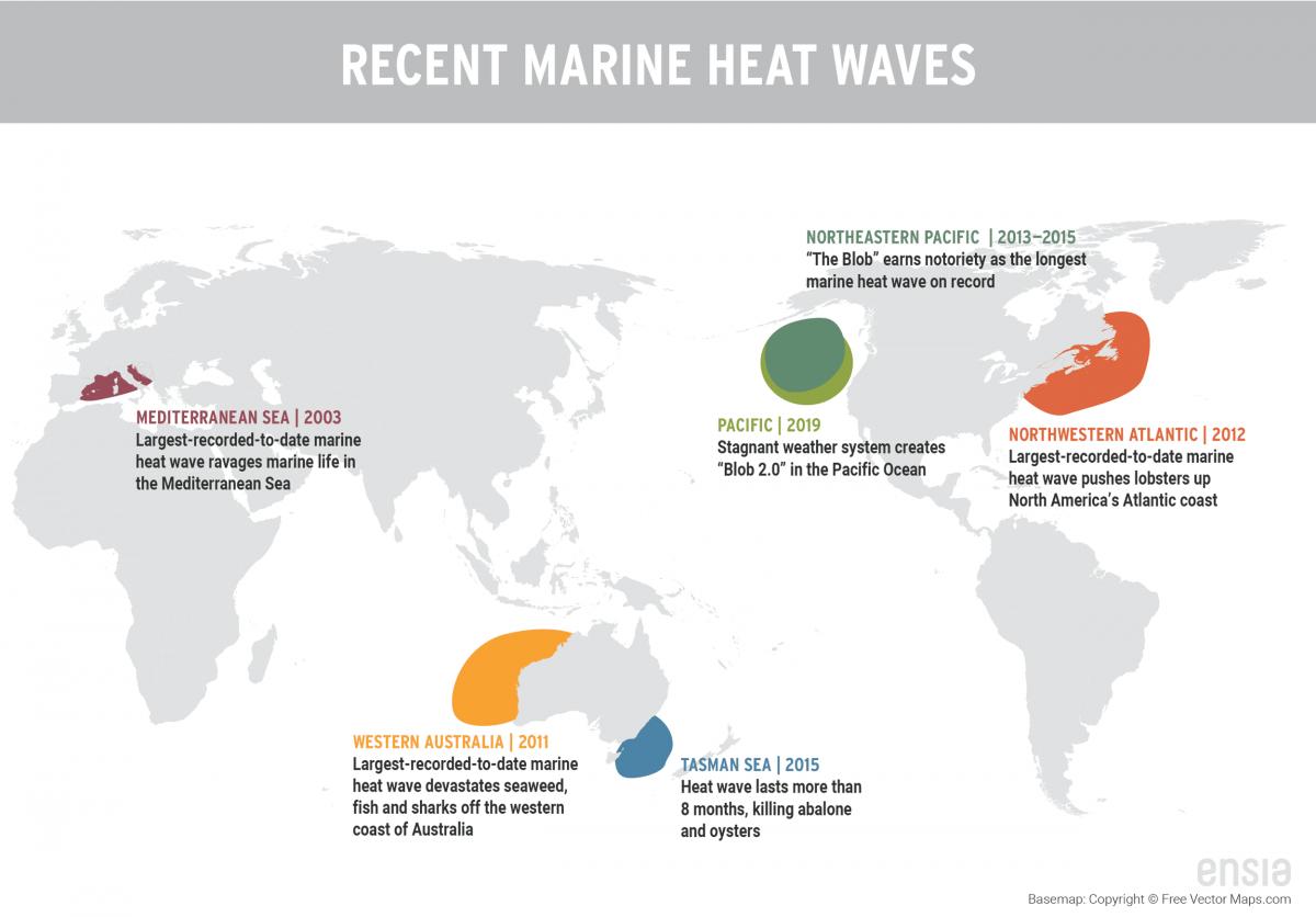map of recent marine heatwaves
