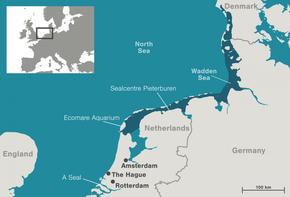 Map of the Wadden Sea and seal sanctuaries in the Netherlands