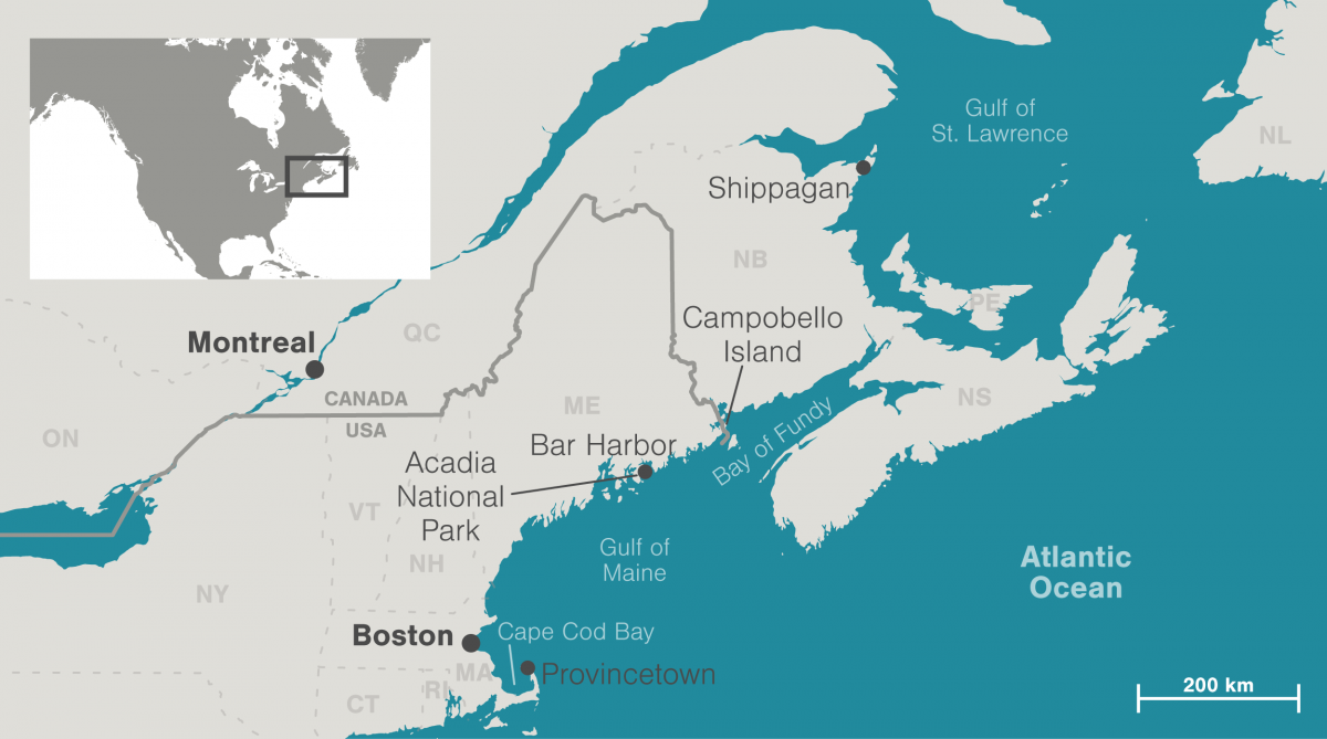 map showing the Gulf of Maine and the Gulf of St. Lawrence