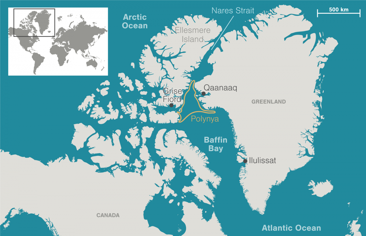 Map showing location of Pikialasorsuaq polynya between Greenland and Canada