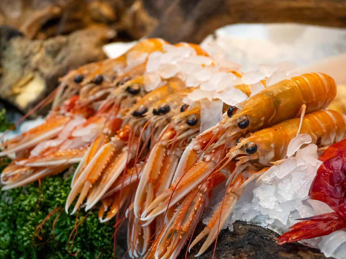 langoustines on ice at a market