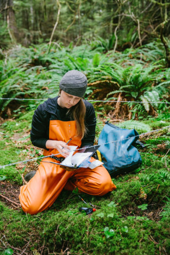 Megan Adams records data at a bear fur collection station in British Columbia. Photo by Jeremy Koreski