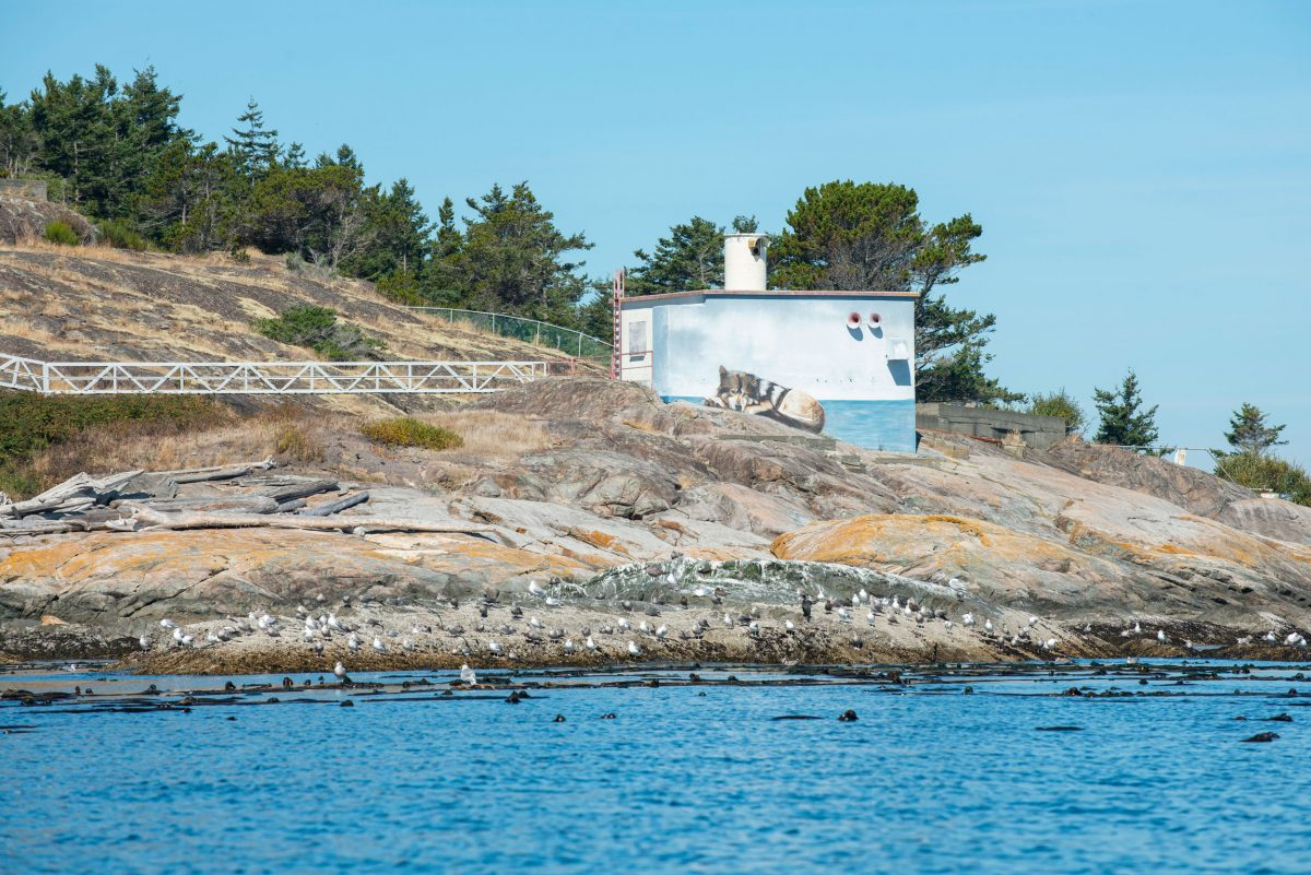 A decommissioned lighthouse on Discover Island sports a mural of Takaya, the wolf