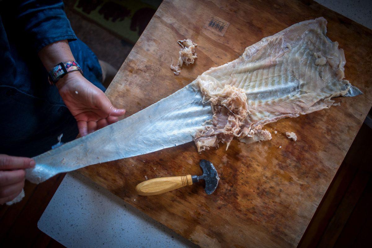 Nathanson scrapes a halibut skin