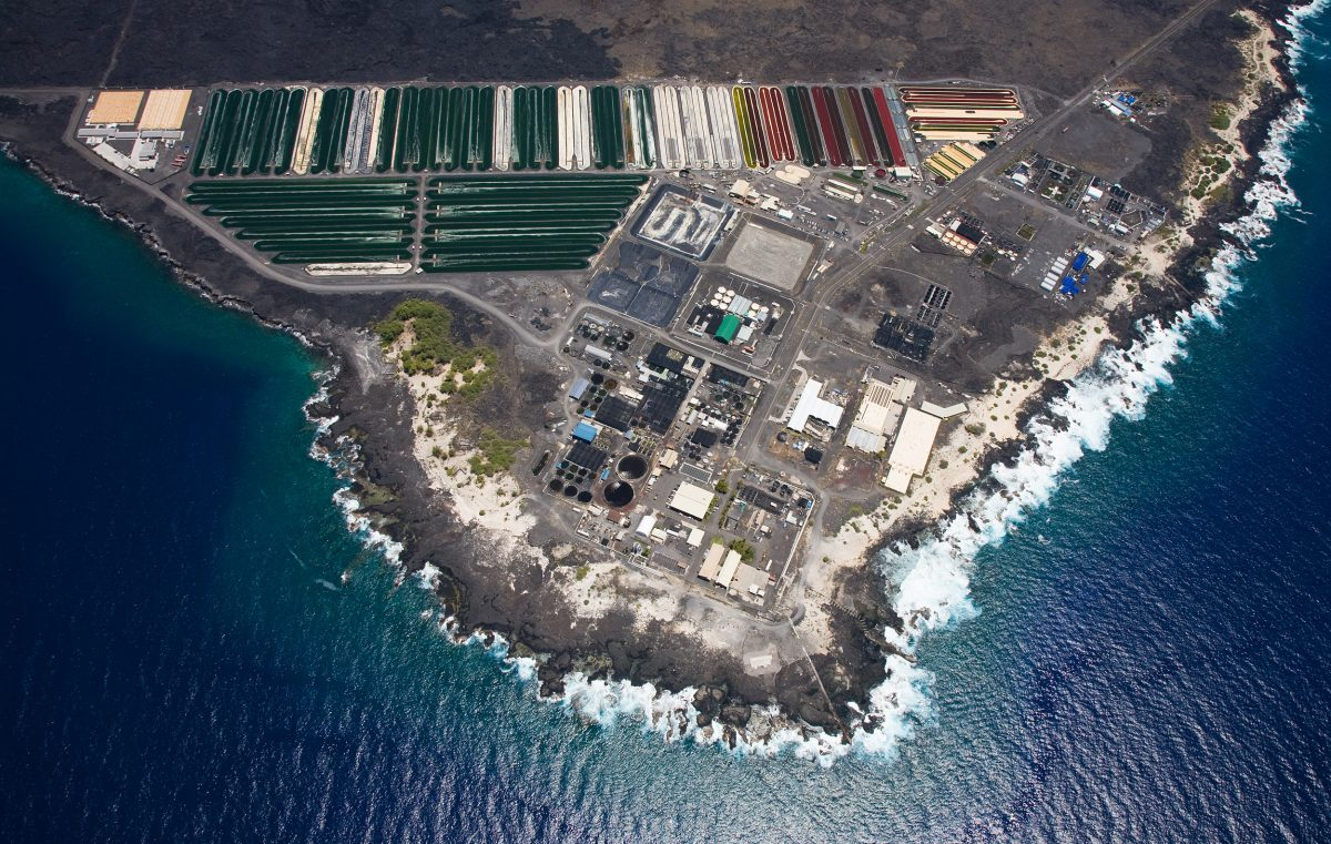 The Hawaii Ocean Science and Technology Park
