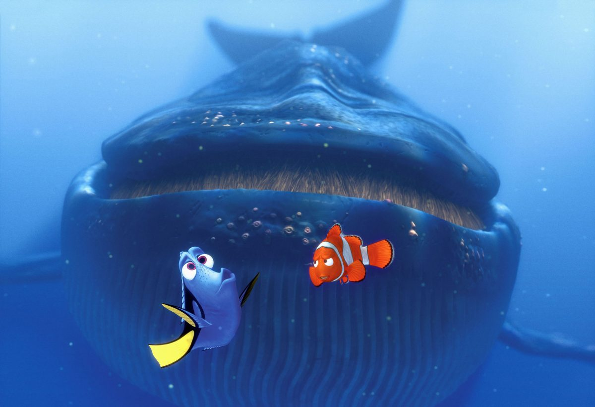 still from the film Finding Nemo