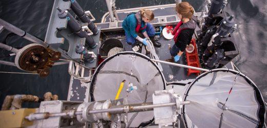 Hakai Institute researchers prepare nets for a plankton tow. Photo by Grant Callegari