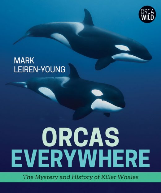 cover image for Orcas Everywhere