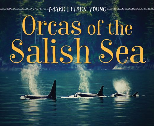cover of Orcas of the Salish Sea