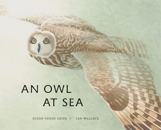 cover image for An Owl at Sea
