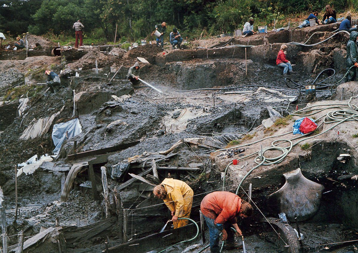 excavation of Ozette village