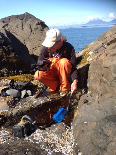 Researcher Matthew Bracken tests the oxygen concentration of a tide pool. Nearby, a blue heater and black yeast reactor are used to manipulate the temperature and carbon dioxide concentration of the water. Photo by Cascade Sorte