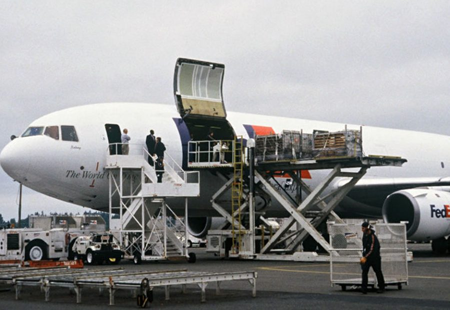 Sea lions being loaded onto a FedEx plane