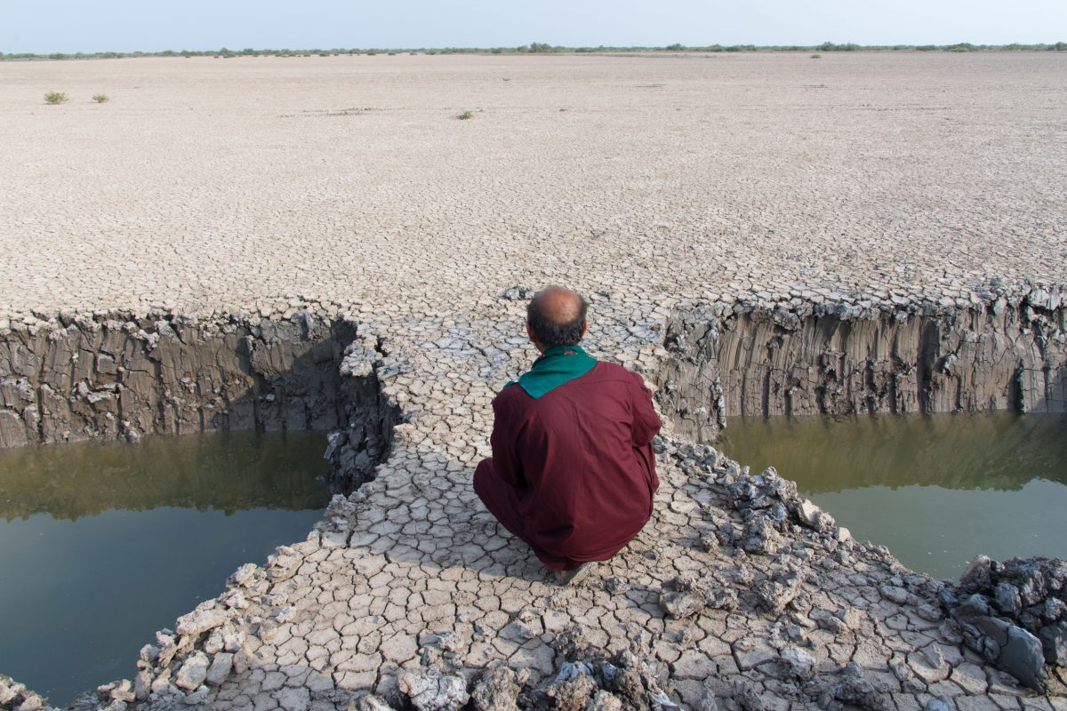 Wildlife Conservation Jobs - man siting between water filled holes