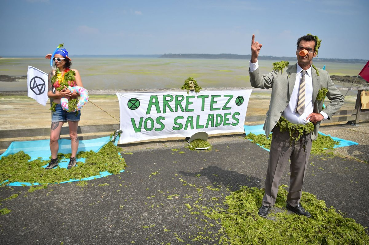 Activists protest the lack of government action on toxic green tides in Brittany, France