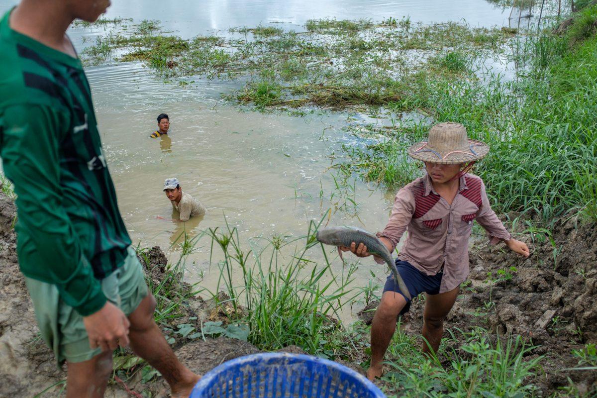 Employees at Ko Kyaw Sein Tun's fish farm