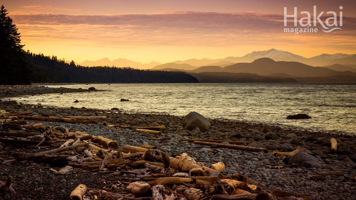sunset on Quadra Island free zoom bakcground