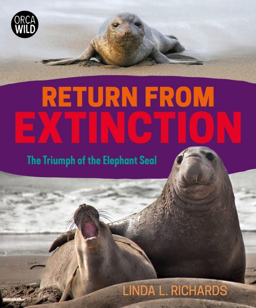 cover of Return from Extinction