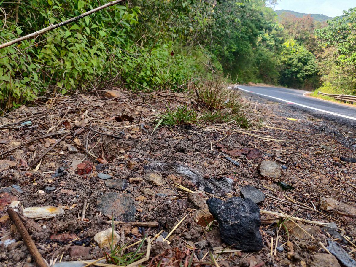 chuck of coal at roadside