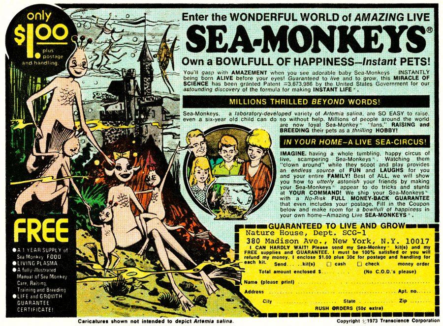 Ad for sea monkeys