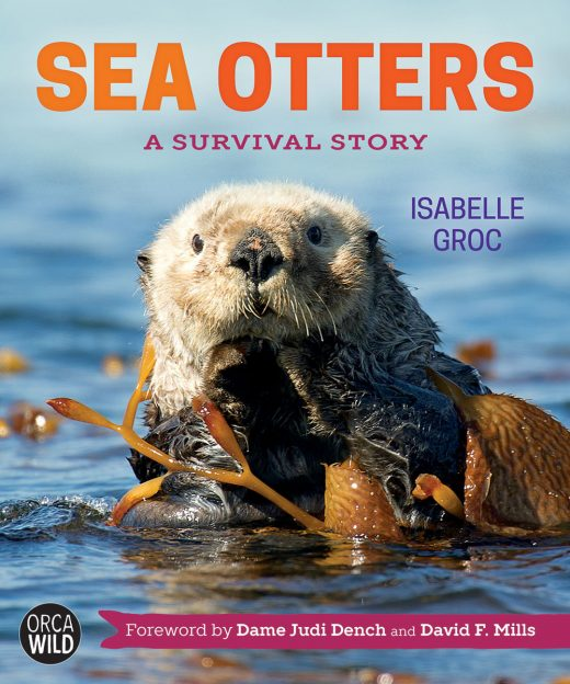 cover of Sea Otters: A Survival Story