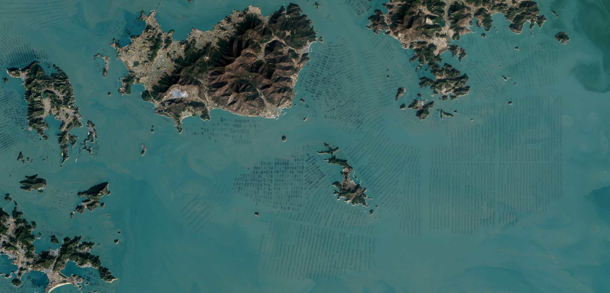 South Korean seaweed farms. Photo by Jesse Allen/NASA Earth Observatory/USGS/Landsat 8–OLI