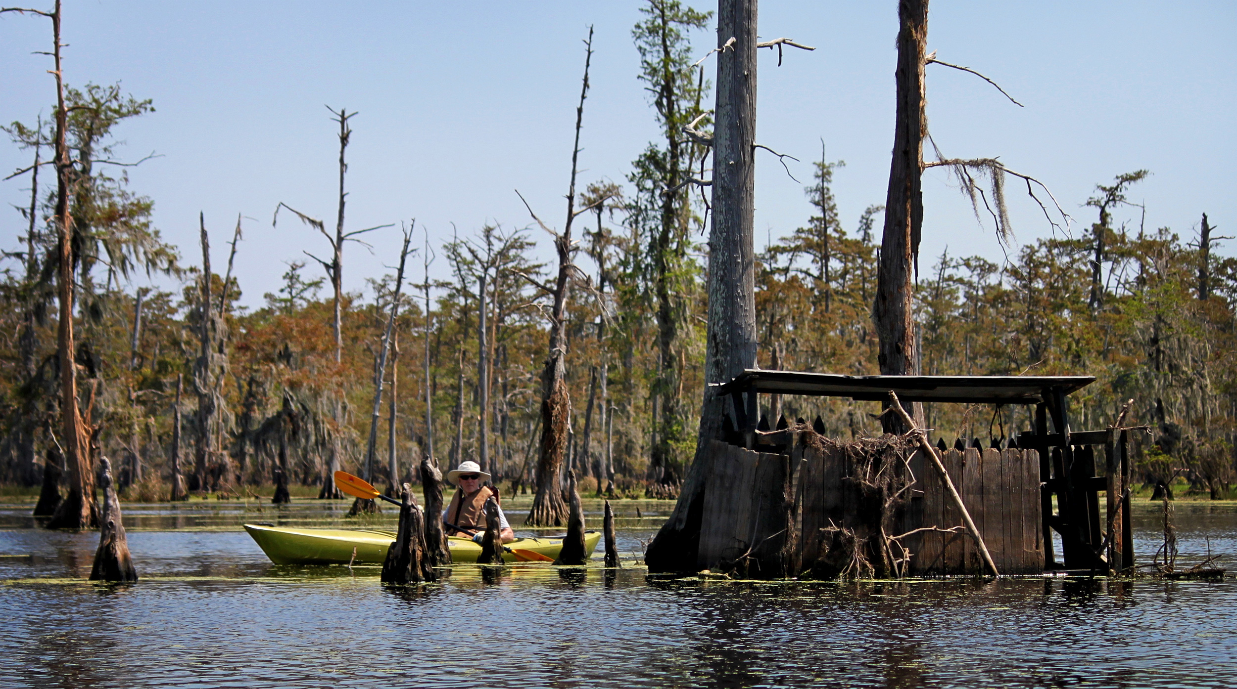 Some of the bayou's strangely deserted buildings, once used for duck  hunting, had been tossed about by storms and hurricanes. Photo by John  Hazlett