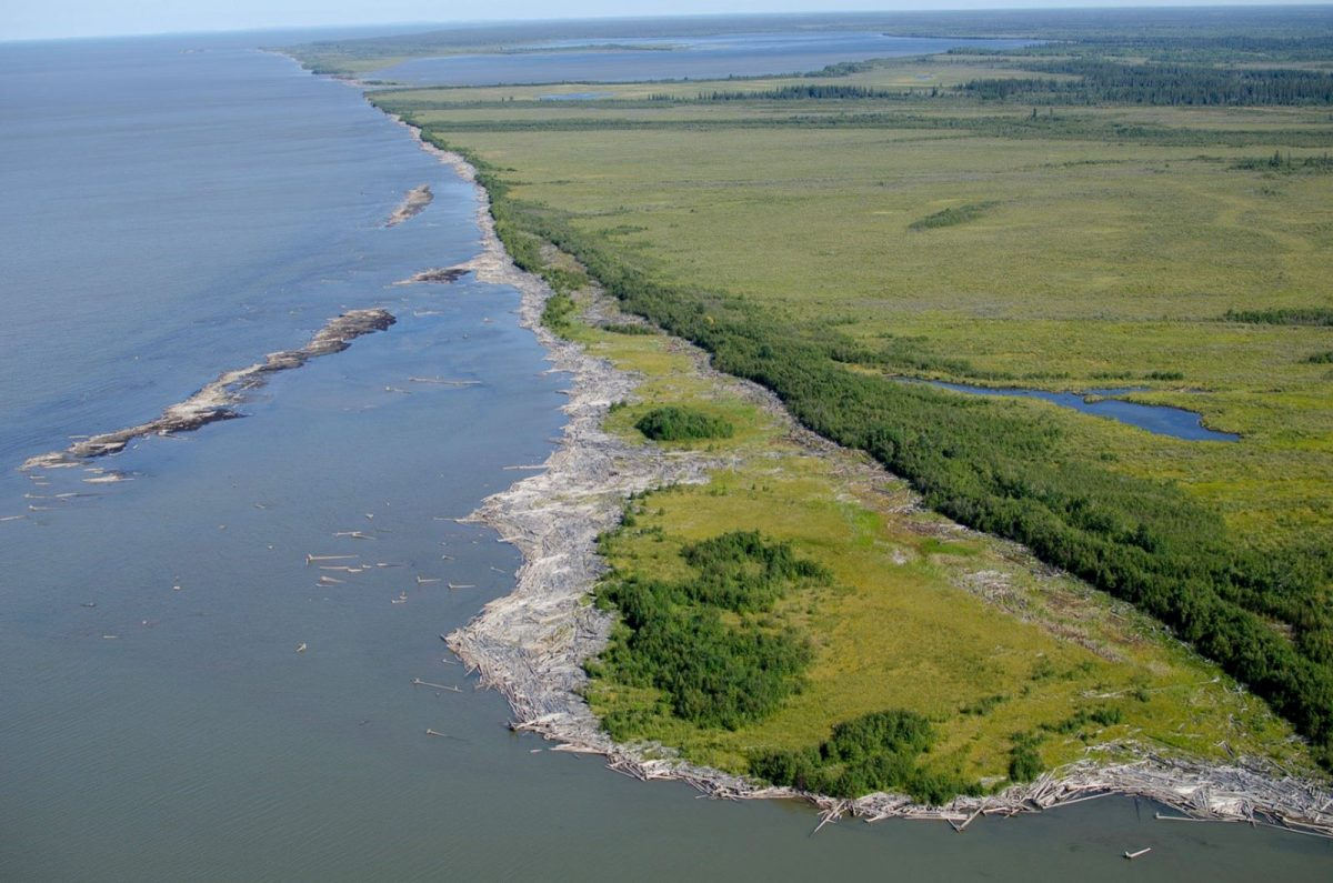 aerial photo of driftwood along the shore of the Slave River's outer delta