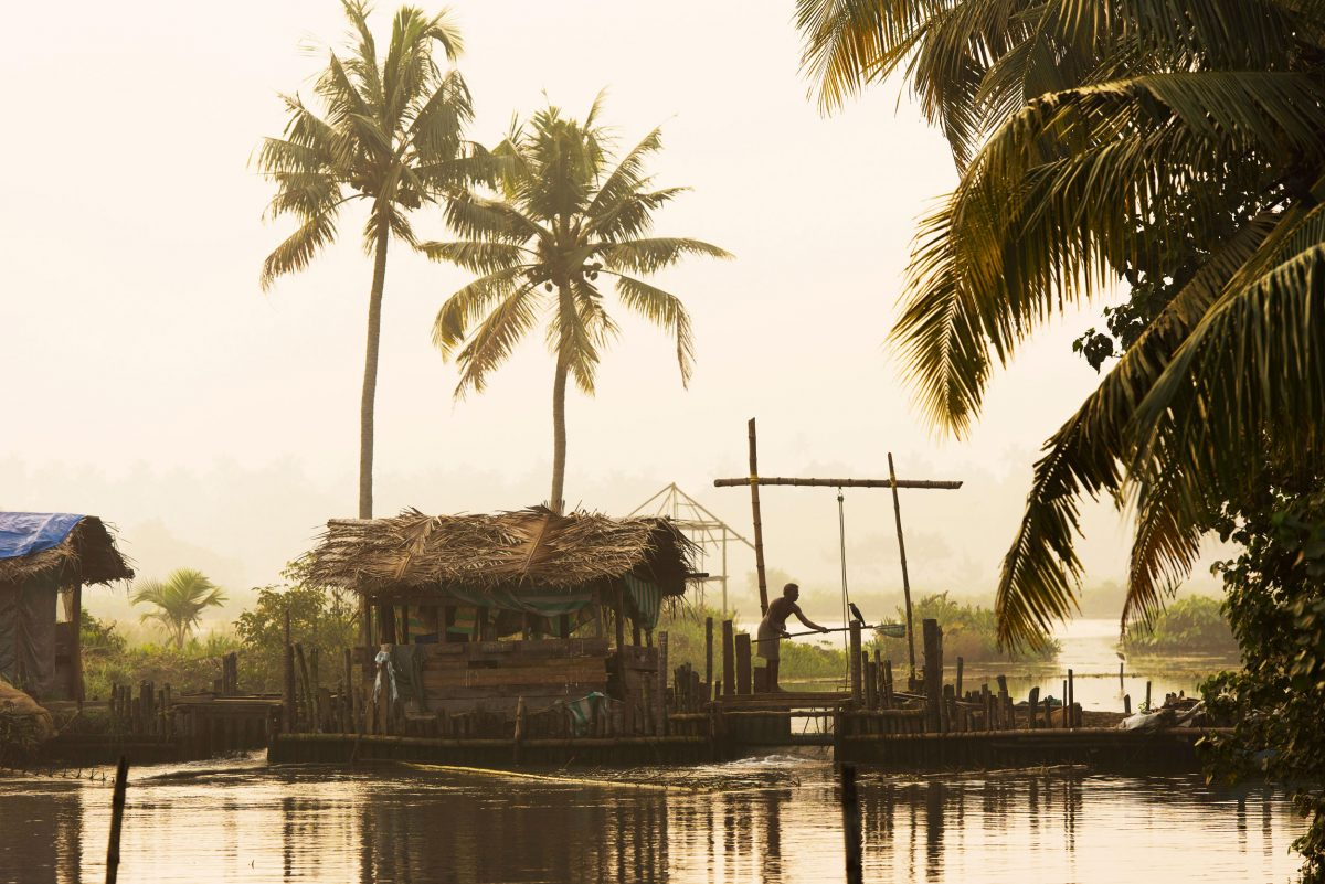 Man on wooden sluice to regulate the water level of the Pokkali rice fields