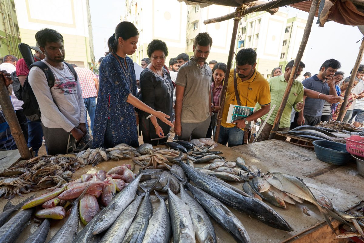 Karnad shows Fishploration participants examples of fish purchased from Kasimedu, Chennai's main fishing harbor.